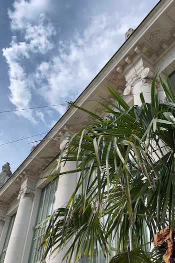 A palm tree and the building from the Cafe Palmenhaus am Burggarten in Vienna photographed from below. A blue sky with a few clouds is visible.