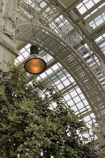 The interior of the Cafe Palmenhaus at the Burggarten in Vienna. Photographed from below from the greenhouse into the sky. Green plants hang on the wall. You can see the sky through the window glass dome
